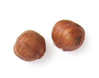 Chocolate Hazelnut Spiced Cookies