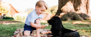 Prince George's 3rd Birthday Photos Show Just How Much He's Grown