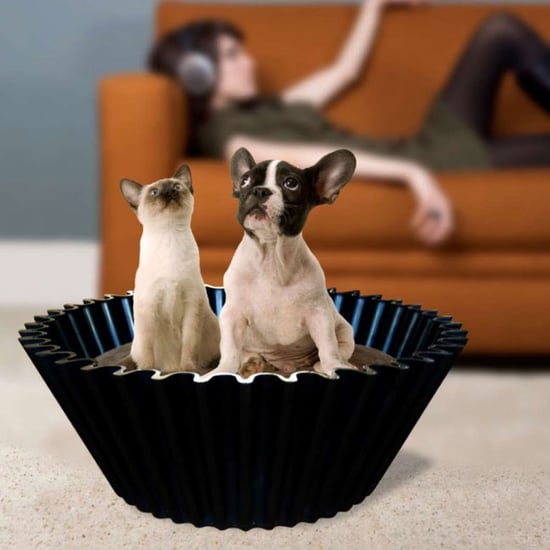 Giant Cupcake Dog Bed
